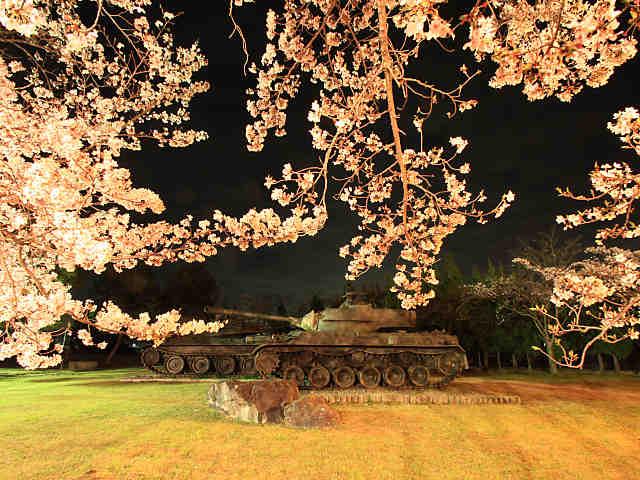 青野原駐屯地の桜のライトアップ