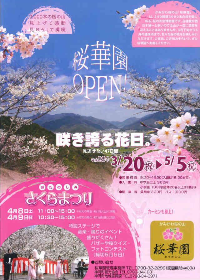 かみかわ桜の山 桜華園桜まつり