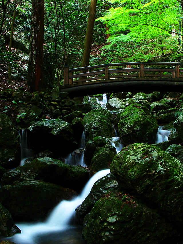 岩瀧寺渓谷