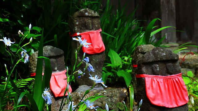 シャガの花と地蔵