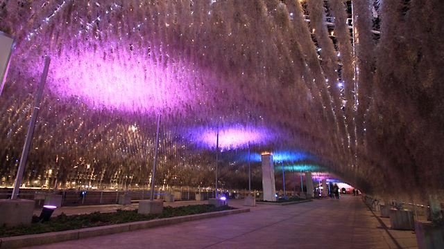 空中植物と光のトンネル