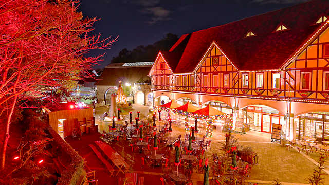 神戸布引ハーブ園の夜景「古城のクリスマス」
