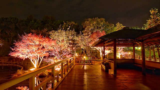 しあわせの村 日本庭園の紅葉ライトアップ