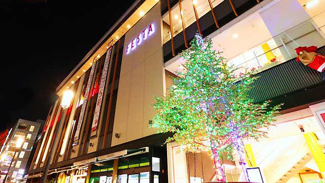 姫路 FESTA(フェスタ)のクリスマスイルミネーション