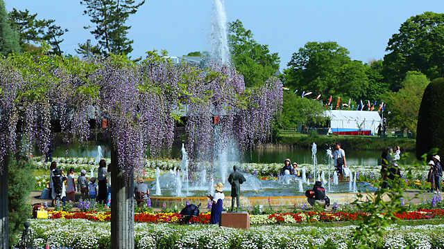 藤棚と四季の花壇の噴水