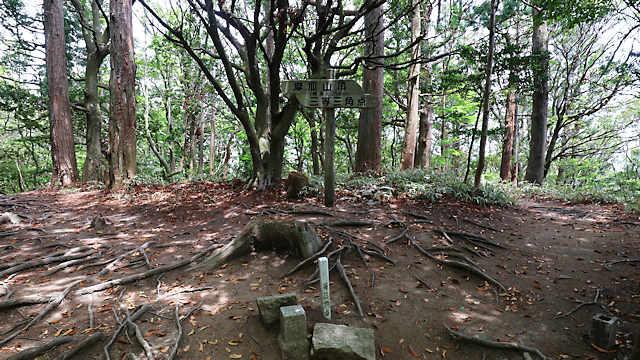 摩耶山山頂の三角点