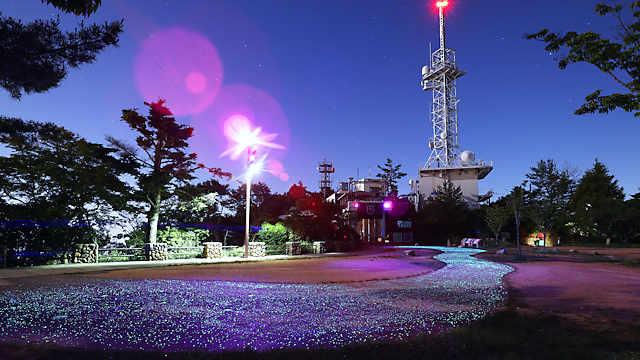 摩耶山掬星台の「きらきら小径」