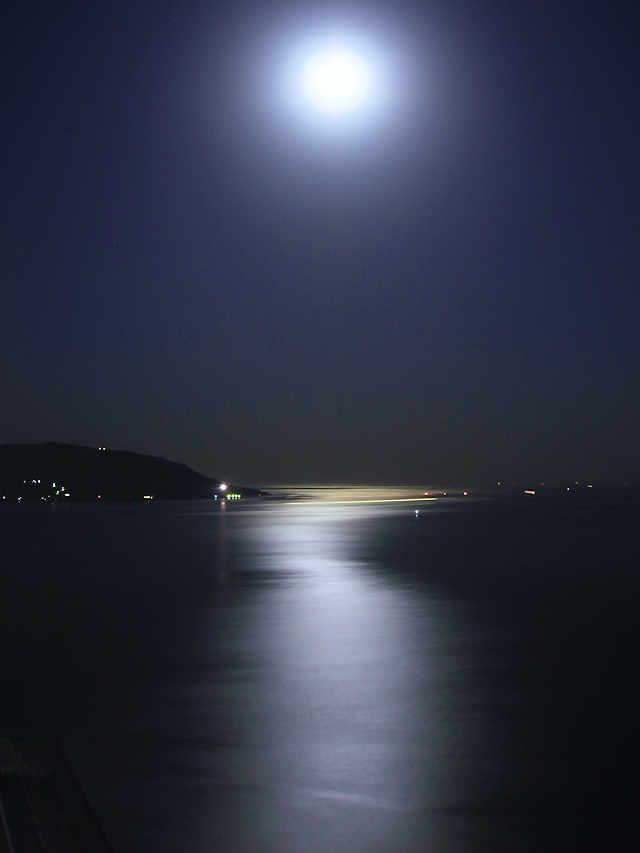 月光に照らされ光り輝く海