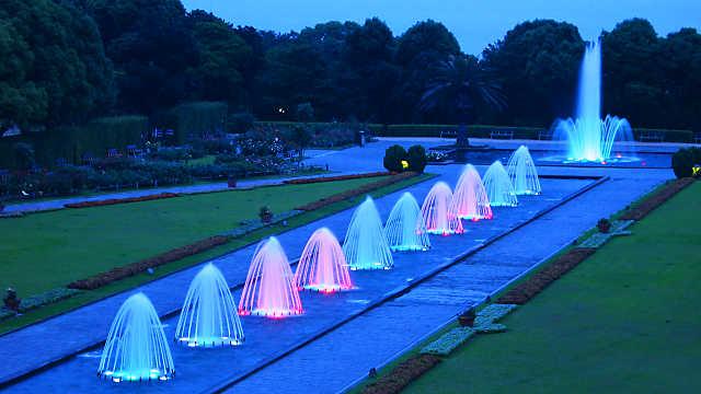 須磨離宮公園夜間開園 庭園と噴水のライトアップ