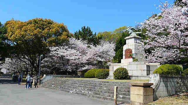 須磨浦公園 東エリアの桜